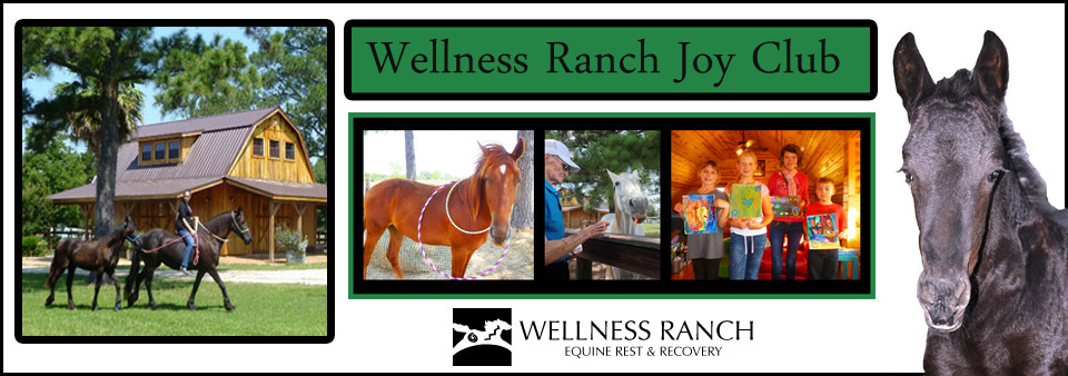 Wellness Ranch Equine Center